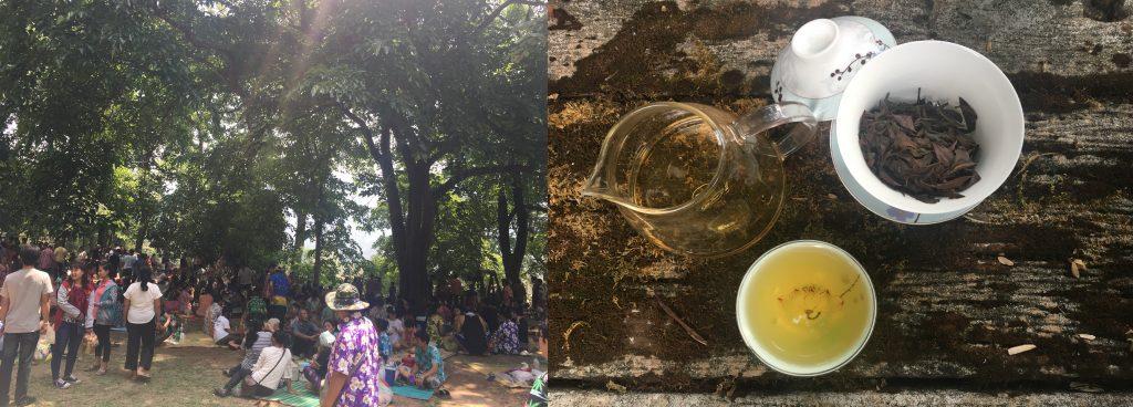 Drinking Tea at Bua Tong Waterfall